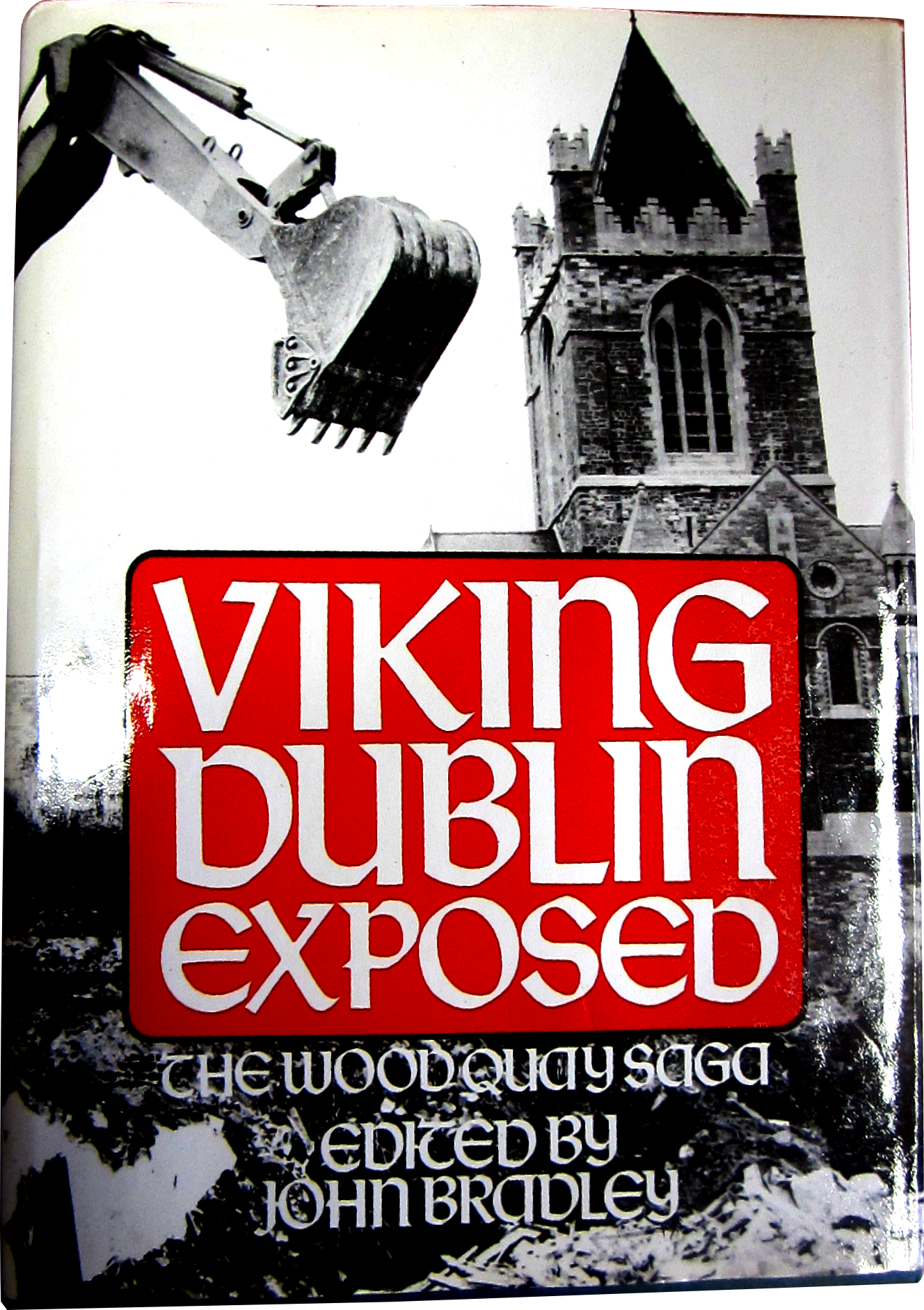 Viking Dublin Exposed: The Wood Quay Saga (1989)